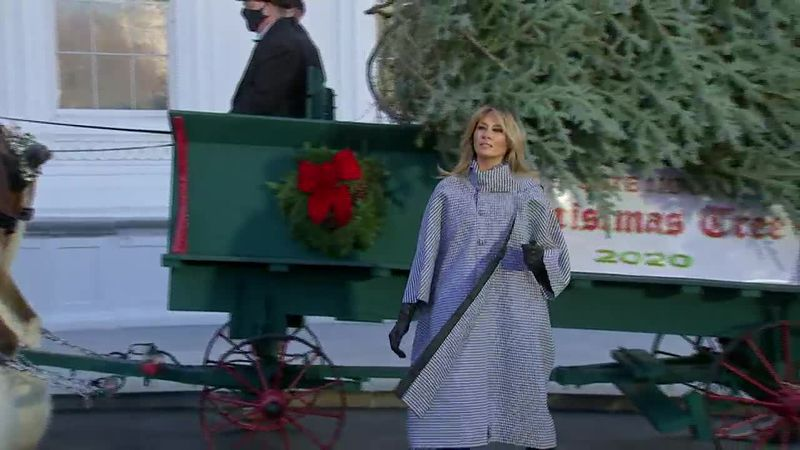 First Lady Melania Trump is presented with the official White House Christmas tree.