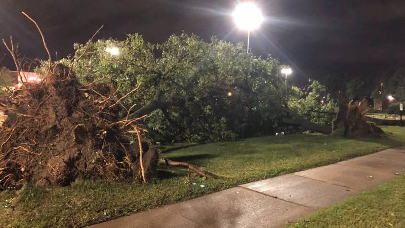 Burnsville, MN storm damage