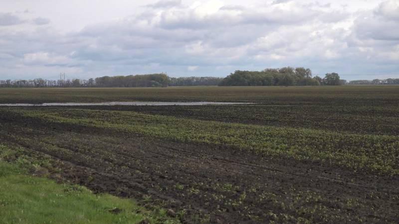 Farmland in Northwood, ND.