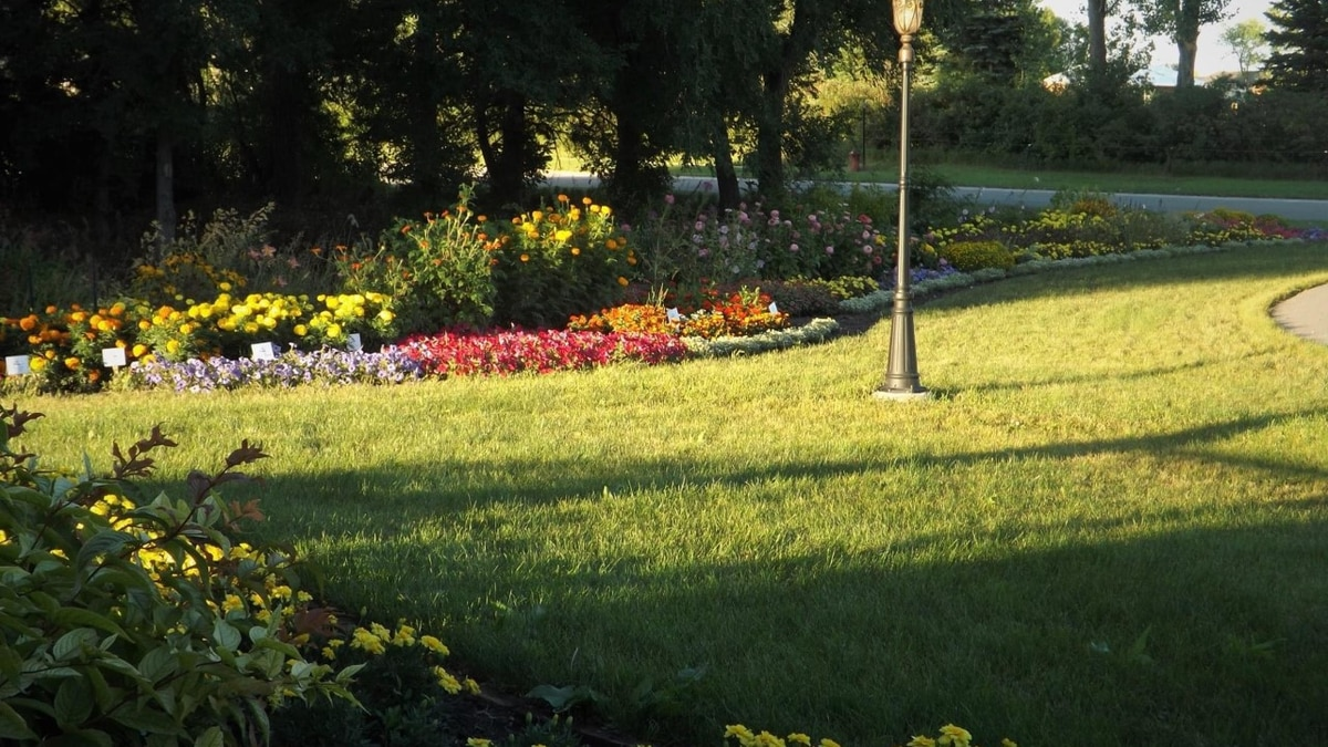 For starters, fertilizing in fall will repair any damage that happened to your lawn over the...