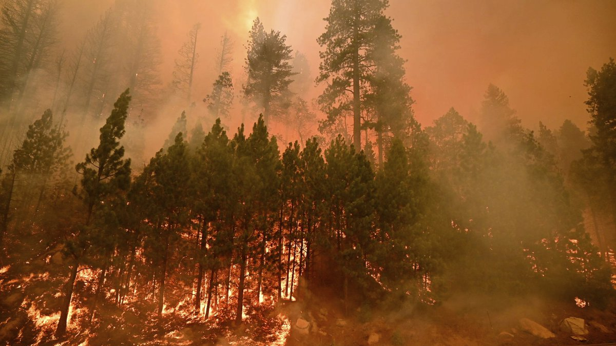 The Caldor Fire burns on both sides of Highway 50 about 10 miles east of Kyburz, Calif., on...