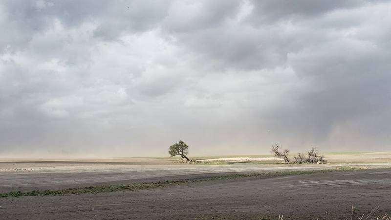 A drought in the Midwest is causing cities to implement water restrictions.