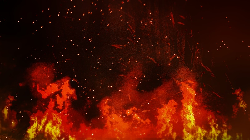 A home approximately five miles northeast of the city of Bird Island suffered severe fire and...