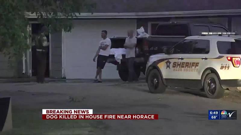 News - Pet dies in Horace house fire