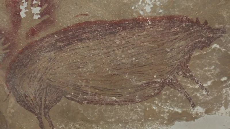 A warty pig painted on a cave wall 45,500 years ago is the world's oldest depiction of an animal.